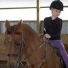 Half Off Horseback-Riding Lesson in Broadalbin