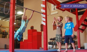 Bodies in Motion: Three or Eight Adults' Obstacle Fit Classes or Kids' Ninja Warrior Classes at Bodies in Motion (Up to 51% Off)