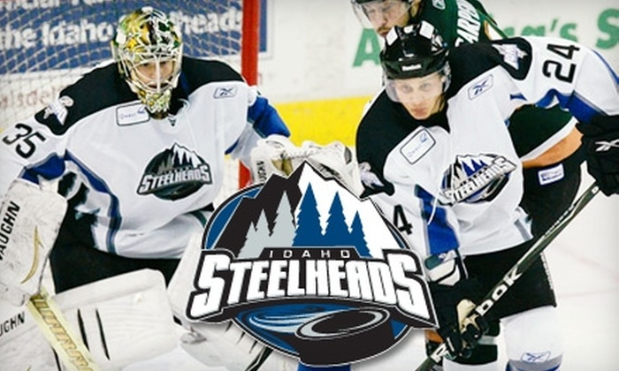 Idaho Steelheads - Downtown: $10 for One Lower Bowl Ticket to an Idaho Steelheads Game (Up to $28.50 Value)