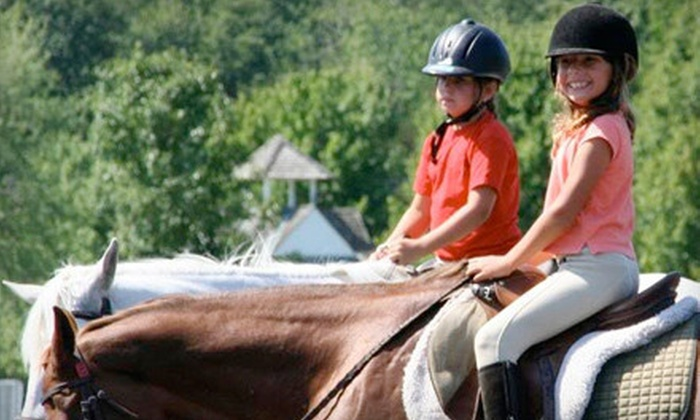 Seaton Hackney Stables - Morris: Horseback Trail Ride for Two or Private Riding Lesson for Two at Seaton Hackney Stables in Morristown (51% Off)
