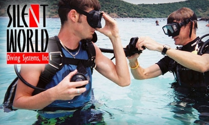 Silent World Diving Systems - Crossroads: $25 for a Three-Hour Scuba Lesson at Silent World Diving Systems ($50 Value)