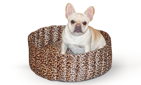 K Lazy Cups Pet Bed 81576c74-0653-11e6-b490-00259060b5da