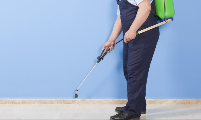 Akela Pest Control - Inland Empire: Pest-Control Treatments from Akela Pest Control (Up to 85% Off). Three Options Available.