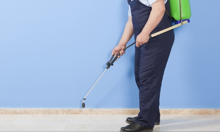 $39 for Exterior Pest Control from TNT Home & Commercial Services ($99.99 Value)
