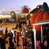 Half Off Rides and Activities at Pumpkin Station
