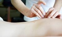 1x oder 2x 60 Min. TCM-Behandlung mit Anamnese, Akupunktur und Moxa bei Dr. med. Wang Li (bis zu 65% sparen*)