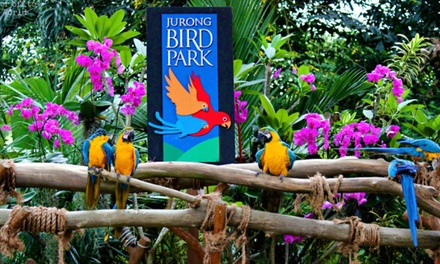 $21.50 for Jurong Bird Park Admission with Tram Ride for 1 Adult (worth $34...