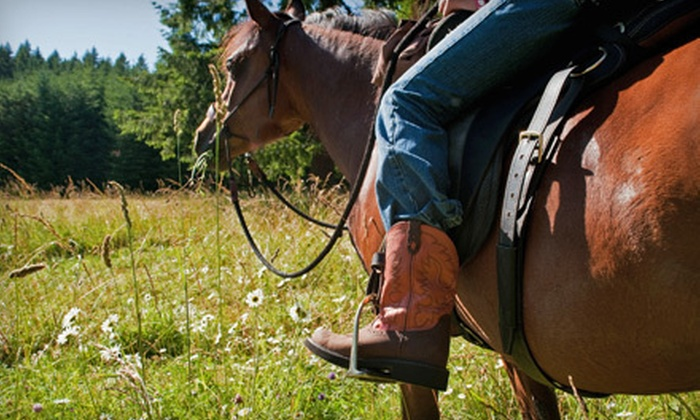 Into The Wild Equine Adventures - Gates: $195 for a Three-Hour Summer or Off-Season Trail Ride for Two at Into The Wild Equine Adventures in Gates ($390 Value)