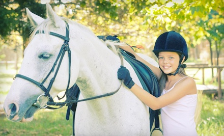 Two 30-Minute Horseback-Riding Lessons (a $60 value) - Fairview Farms LLC in New Bloomfield