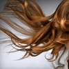 Up to 60% Off Family Hair Services in Fair Lawn