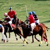 Up to 55% Off at The Polo Party in Scottsdale
