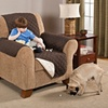 Furniture Protector for Pets
