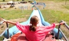 Idaho X-Sports - Garden Valley: Two Hours of Unlimited Adventure-Park Activities for One or Four at Idaho X-Sports (Up to 43% Off)