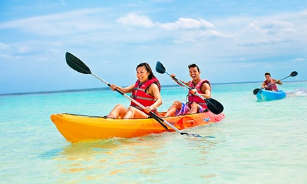 Paddleboard, Kayak, or Beach Chair Rental at Miami Watersports (Up to 80% Off). Three Options Available.