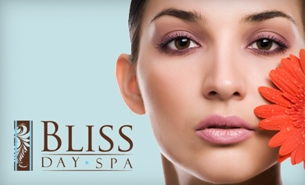 BLISS SPA GROUPON