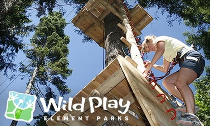 WildPlay Maple Ridge - Maple Ridge: $20 for One Adult Ticket or Two Children's Tickets at WildPlay Maple Ridge ($40 Value)
