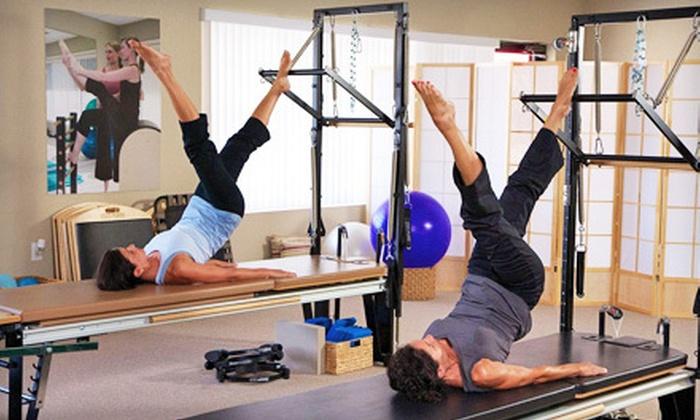 Pilates Movement Studio - Carrollwood: Three or Five Private Lessons at Pilates Movement Studio (Up to 77% Off)