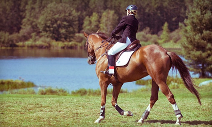 West End Equestrian - Newberry-Archer: 90-Minute Trail Ride for Two or Three One-Hour Horseback-Riding Lessons at West End Equestrian Center (Up to 57% Off)