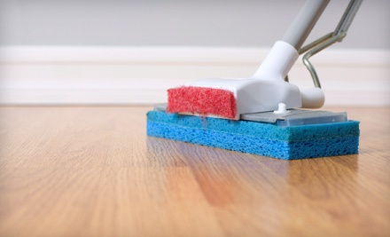 1-Hour of Professional House Cleaning by Two Maids (a $90 value) - GreenClean in
