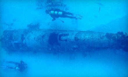 Waikiki Diving Center - Waikiki Diving Center in Honolulu