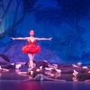 Ballet Theatre of Carmel – Up to 40% Off