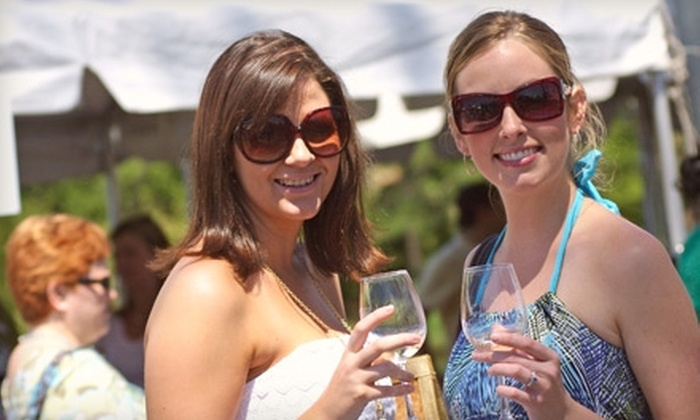 Sandestin Wine Festival - Destin: $40 for One Ticket to the 25th Annual Sandestin Wine Festival in Destin ($80 Value)