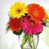 52% Off Flowers or Gift Baskets