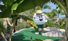 Putt'n Around Delray Beach - Delray Beach: $9 for One 18-Hole Round of Miniature Golf for Two at Putt'n Around Delray Beach (Up to $19.70 Value)