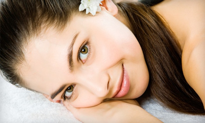 Wholistic Skin Care Specialist - DePaul: $59 for an Express Custom-Blend Facial and Hydrating Back Treatment at Wholistic Skin Care Specialist