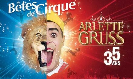 1 place adulte ou enfant, catégories et dates au choix, dès 14 € au Cirque Arlette Gruss à Bordeaux