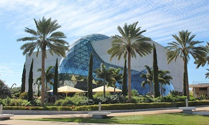 25% Off Admission to The Dali Museum at The Dali Museum, plus 6.0% Cash Back from Ebates.