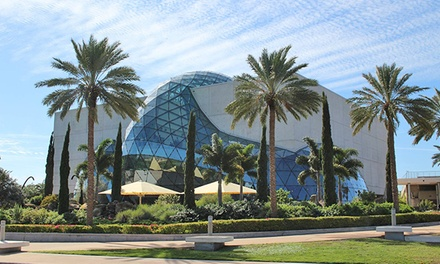 $19 for Single Adult Admission to The Dali Museum ($25 Value)
