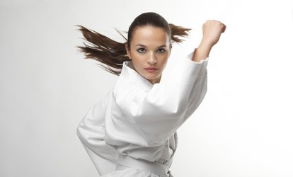 image for $44 Off $87 Worth of Martial Arts / Karate / MMA