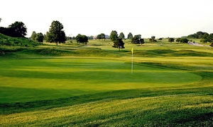 Emerald Greens Golf Course: 18-Hole Round of Golf with Cart for Two or Four at Emerald Greens Golf Course (Up to 55% Off)