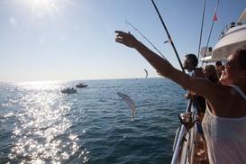 Catamaran Picardie: Sortie pêche à la demi-journée avec casse-croûte pour 1, 2 ou 4 personnes dès 12,90 €chez Catamaran Picardie