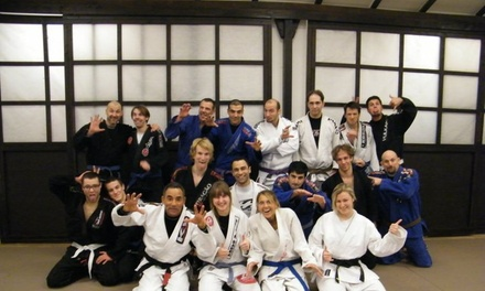 $51 for $147 Worth of Martial-Arts Lessons — Joao Crus Brazilian Jiu-JItsu