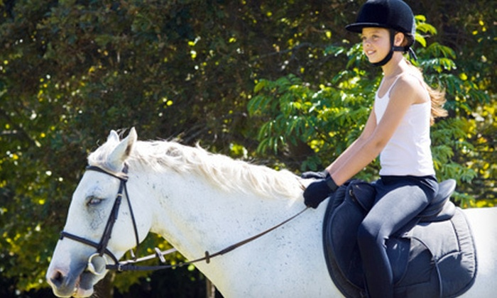 Stepping Stones Riding Academy - Hornby: Two, Four, or Six Regular or Therapeutic Horseback-Riding Lessons at Stepping Stones Riding Academy (Up to 70% Off)