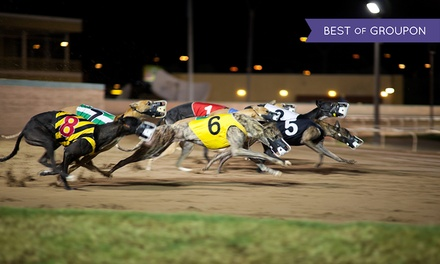 Greyhound Racing, Two Day Tickets with Meal, Drink and Racecard, 24 January - 16 April, Poole Stadium (Up to 65% Off)