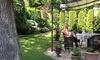 Professionelle Garten-/Baumpflege