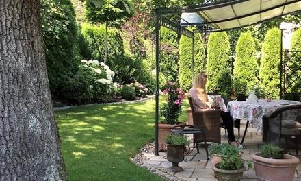 Bis zu 4 Stunden professionelle Garten  oder Baumpflege oder Fällung von Bäumen mit Tree Kings (bis zu 60% sparen*)