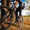 40% Off Bicycle Rental
