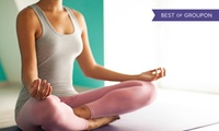 Choice of Mindfulness Workshop with Paddy Brosnan, 9 July or 17 September in Limerick and Tralee (Up to 69% Off)