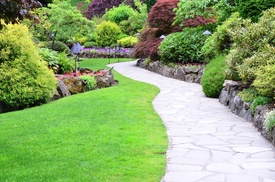 S&A Landscaping: $25 for $45 Worth of Services — S&A Landscaping