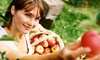 B.J. Reece Orchards - Atlanta: Fall Fun Farm Package at B.J. Reece Orchards (Up to 46% Off)