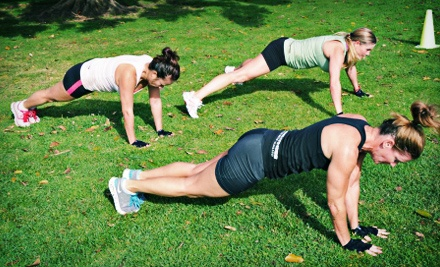 10 Outdoor Fitness Classes, or One Month or Six Weeks of Unlimited Outdoor Fitness Classes from Wired Fitness (83% Off)