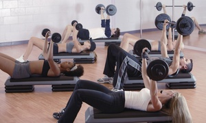Rocksteady Fitness: Four Weeks of Unlimited Boot-Camp Classes at Rocksteady Fitness (65% Off)