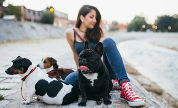 Dog Walking Online Course