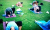 Vessel Yoga - Near West Side: 10 or 20 Outdoor Yoga Classes from Vessel Yoga Chicago (Up to 71% Off)