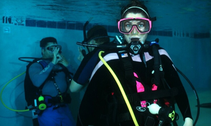 Divers Supply - Carrollwood: $199 for a PADI Open-Water Diver Course at Divers Supply ($389 Value)
