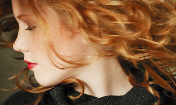 Chantilly Lace Salon - Livermore: Haircut Package with Style or Style and Root Touch-Up or Partial Highlights at Chantilly Lace Salon in Livermore (Up to 55% Off)